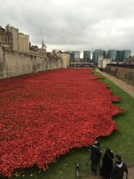 the kollektive tower of london poppies