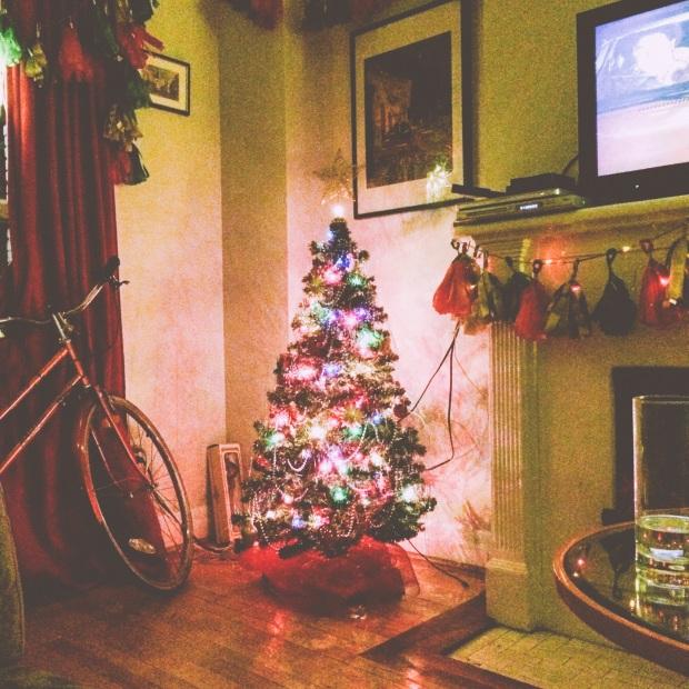 The Kollektive photography christmas tree