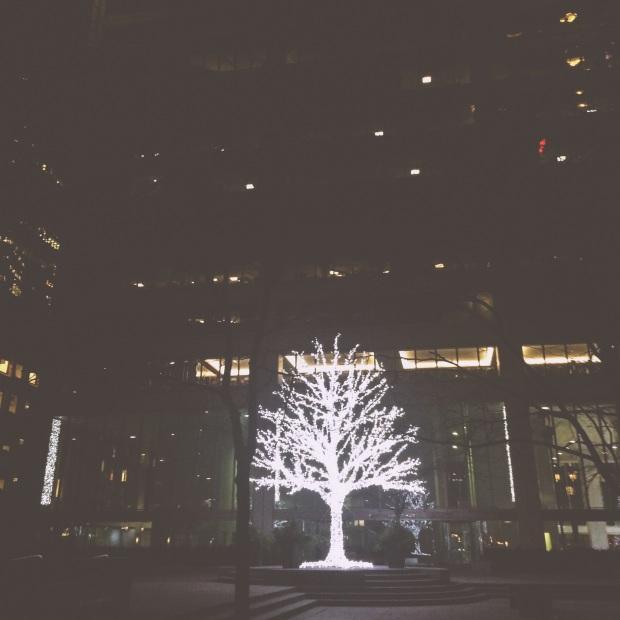 The Kollektive Photography Christmas in Toronto