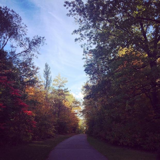 fall_Path_Thekollektive