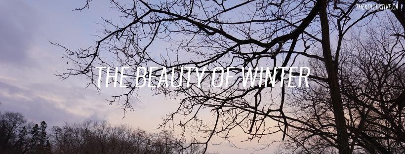 thekollektive_beautyofwinter