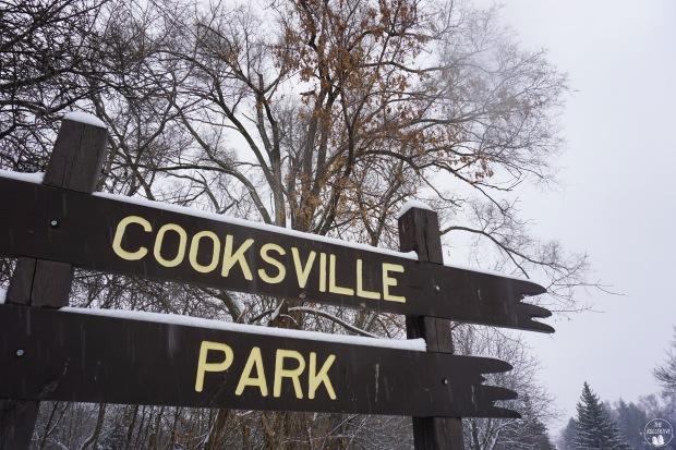 thekollektive_cooksville_park_winter_01