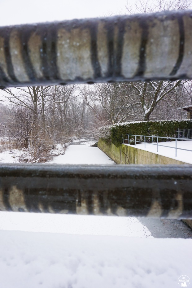 thekollektive_cooksville_park_winter_08