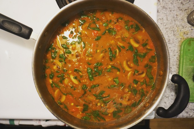 thekollektive_recipe_vegetablecurrysoup_04