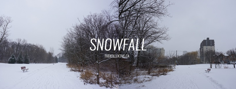 thekollektive_snowfall