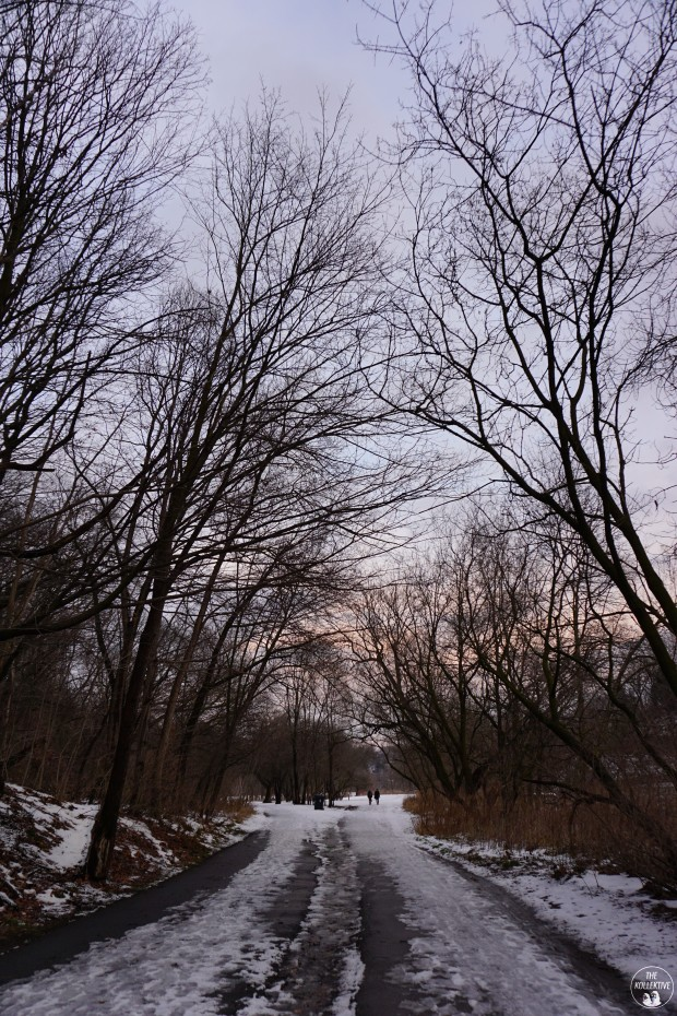 thekollektive_winterwalk2016_06