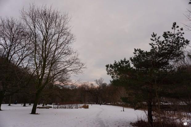 thekollektive_winterwalk2016_07