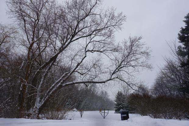 thekollektive_winterwonderland