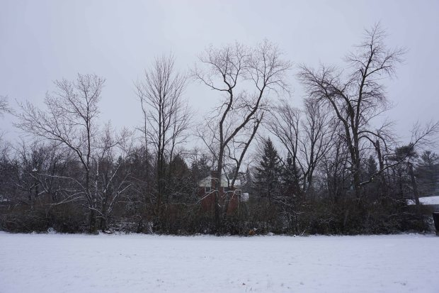 TheKollektive_Winter_Image