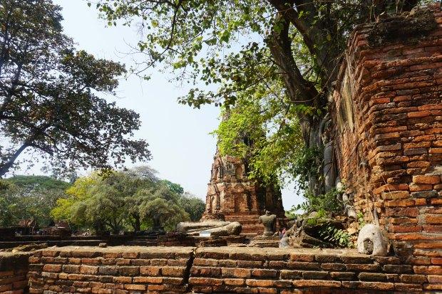 TheKollektive_Ayutthaya_07