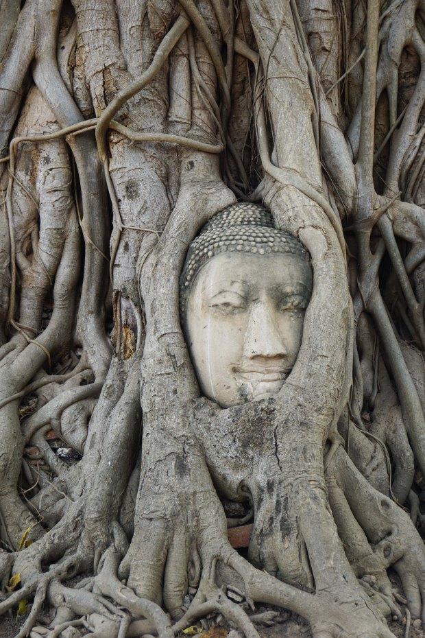 TheKollektive_Ayutthaya_09