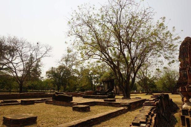 TheKollektive_Ayutthaya_39