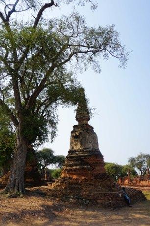 TheKollektive_Ayutthaya_60