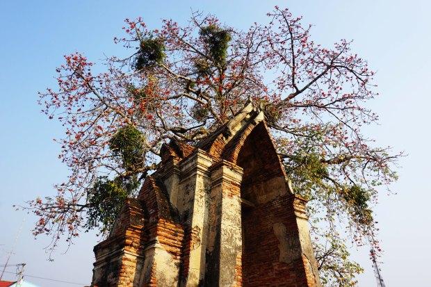 TheKollektive_Ayutthaya_80