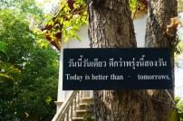 TheKollektive_ChiangMai_wat_phra_singh_30