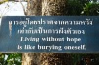 TheKollektive_ChiangMai_wat_phra_singh_31