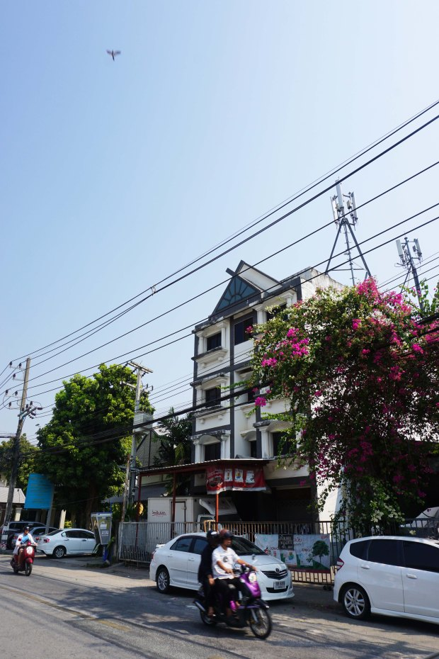 TheKollektive_ChiangMai_14