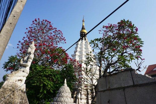 TheKollektive_ChiangMai_28