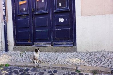 Lisbon_Alfama_11